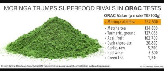 Moringa Olifera – 'New' High Potency Superfood