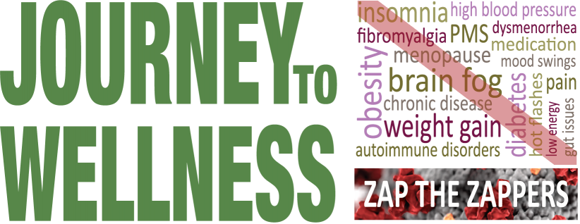Journey to Wellness - Zap the Zappers