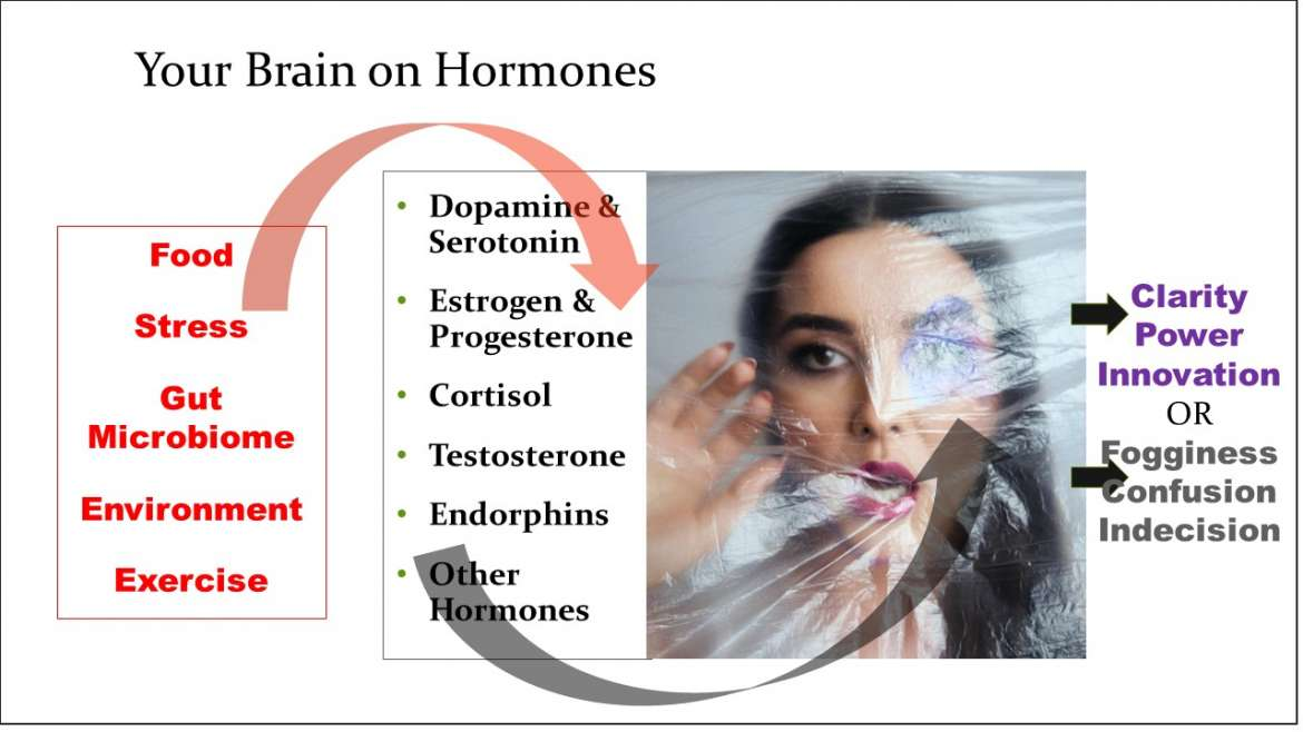 Think Clearer: Hormonal Influences on Your Brain Resolved Simply
